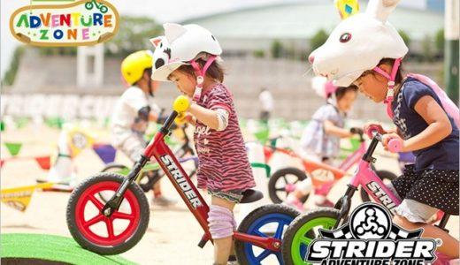 ストライダーには2歳から出場できる大会がある!?イベントの詳細をまとめました。